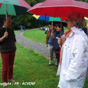 Debut de visite pluvieuse et studieuse